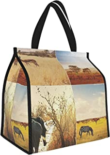 Y-shop Safari Decor African Safari Collages with Native Wild Savannah Animals in Exotic Lands Lonely Planet Photo Multi Pi...