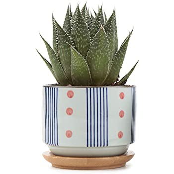 T4U 3 Inch Ceramic Succulent Planter Pots with Bamboo Tray, Japanese Style Porcelain Handicraft as Gift for Mom Sister Aunt Best for Home Office Restaurant Table Desk Window Sill Decoration