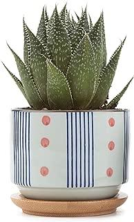 T4U 3 Inch Ceramic Japanese Style Pot White, Serial No.5 Succulent Plant Cactus Planter Flower Container