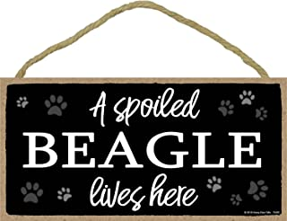 A Spoiled Beagle Lives Here - 5 x 10 inch Hanging Dog Sign, Wall Art, Decorative Wood Sign Home Decor, Beagle Gifts