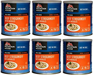 Mountain House Beef Stroganoff #10 Can Freeze Dried Food - 6 CANS per Case NEW!