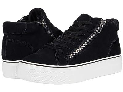 Steve Madden Gryphon Sneaker (Black Suede) Women