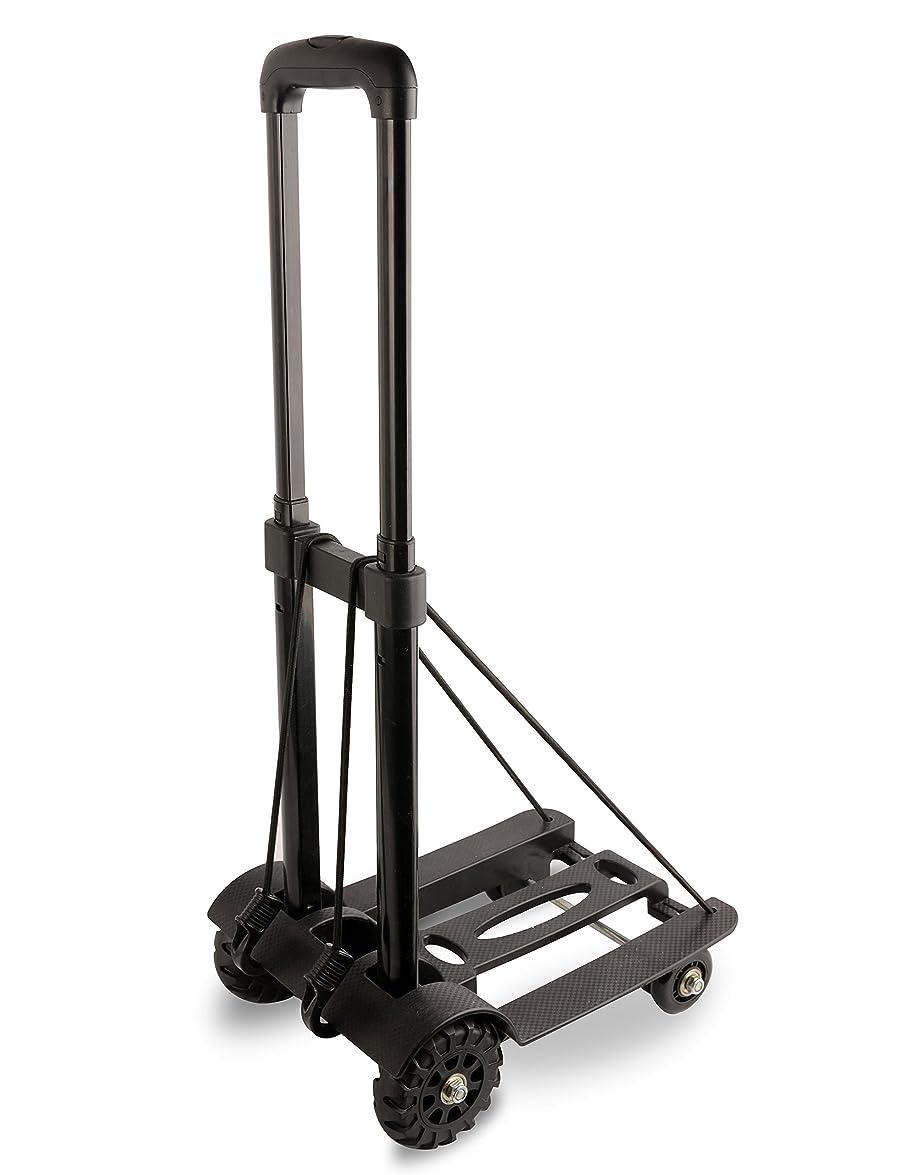 額更新するスーパーマーケットコンパクトキャリーカート ショッピングカート 折りたたみ式 軽量 耐荷重50kg 旅行用品 アウトドア 運搬 カート