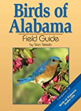 Birds of Alabama Field Guide (Bird Identification Guides)