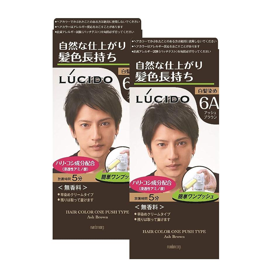 かりてバズ観察するLUCIDO(ルシード) ルシード ワンプッシュケアカラー アッシュブラウン (医薬部外品) 白髪染め 2個パック