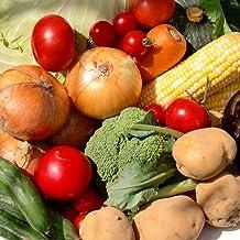 むつみ屋 旬の無農薬野菜セット 11品