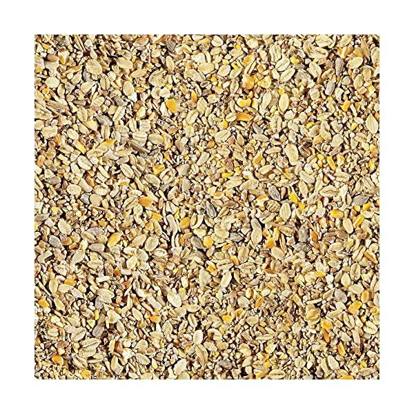 Gardman Seed, 12.75 kg
