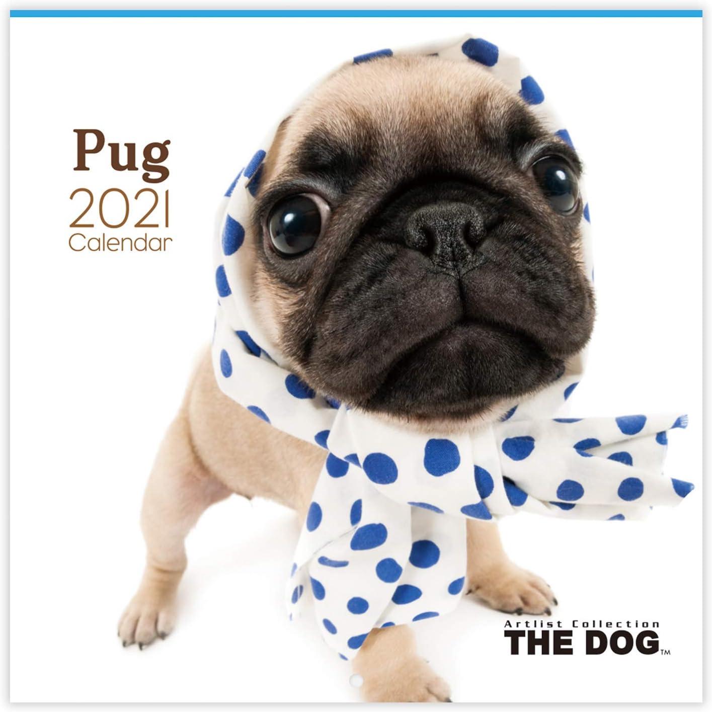 THE Max 72% OFF DOG 2021 Calendar Over item handling Pug Wall