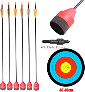 10 Archery Arrows With Screw Tip Broadhead Field /& Target broadhead compatible.