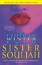 The Coldest Winter Ever: A Novel