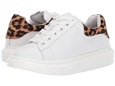 Steven Glazed Sneaker (Leopard Multi) Women