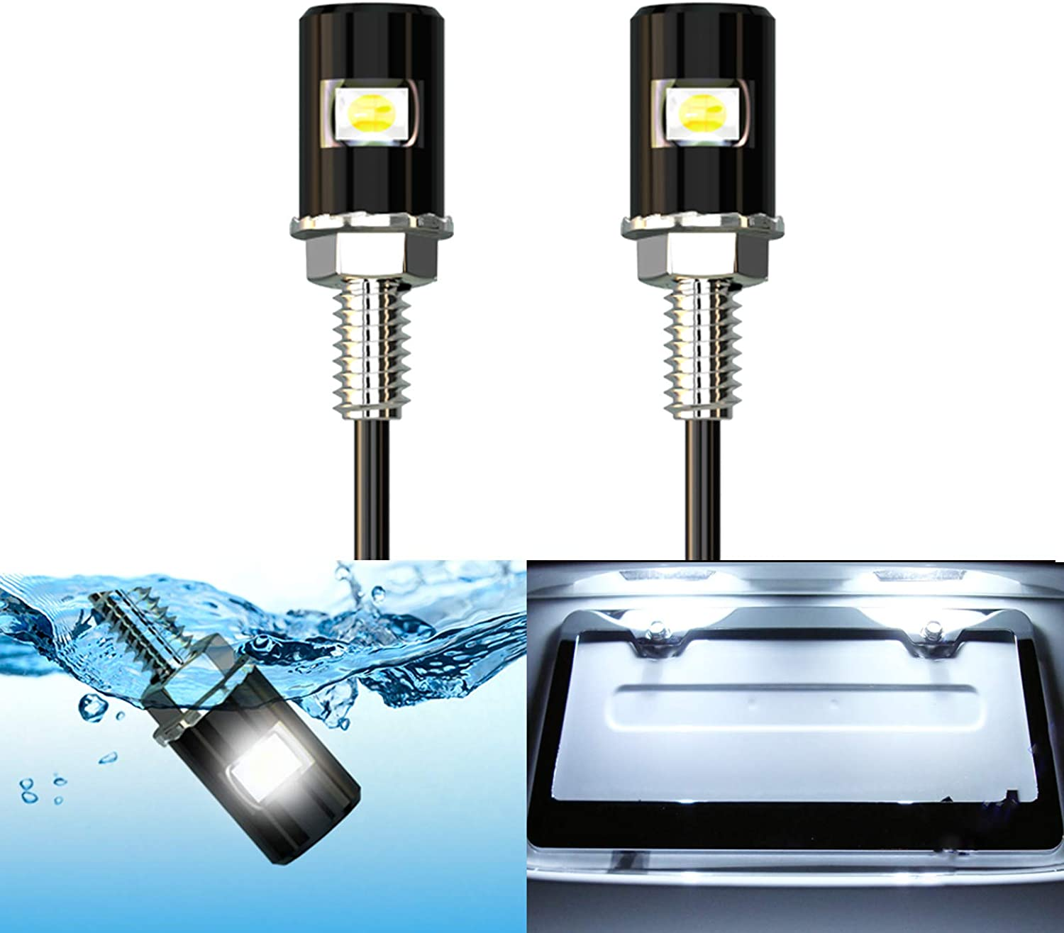 Bombing free shipping WEIMELTOY excellence License Plate Light Screw LED Bolt Bri Super