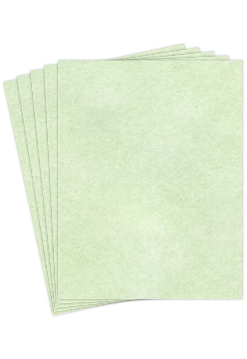 """Stationery Parchment Recycled Paper   65Lb Cover Cardstock   8.5"""" x 11"""" Inches   50 Sheets Per Pack   Spring Green"""