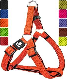 DDOXX Arnés Perro Step-In Air Mesh, Ajustable, Acolchado | Diferentes Colores & Tamaños | para Perros Pequeño, Mediano y Grande | Accesorios Gato Cachorro | Naranja, XS