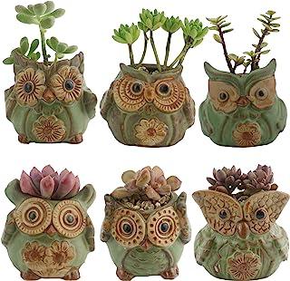 Ogrmar 6Pack Owl Plant Window Boxes Cute Owl Flower Pot/Modern Ceramic Succulent Planter Pots/Tiny Flower Plant Containers...
