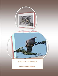 Mia The Cat And The Red Tail Hawk (English Edition)