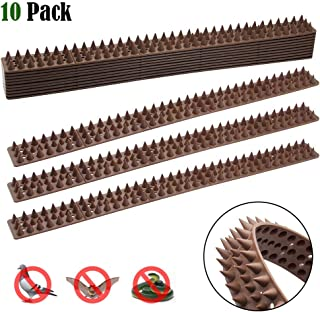 Hausse Bird Spikes, Squirrel Small Birds Pigeons Repellent Spikes for Outdoor, Wall, Fence (Set of 10)