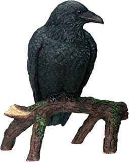 YTC Raven - Collectible Figurine Statue Sculpture Figure Crow Bird Model