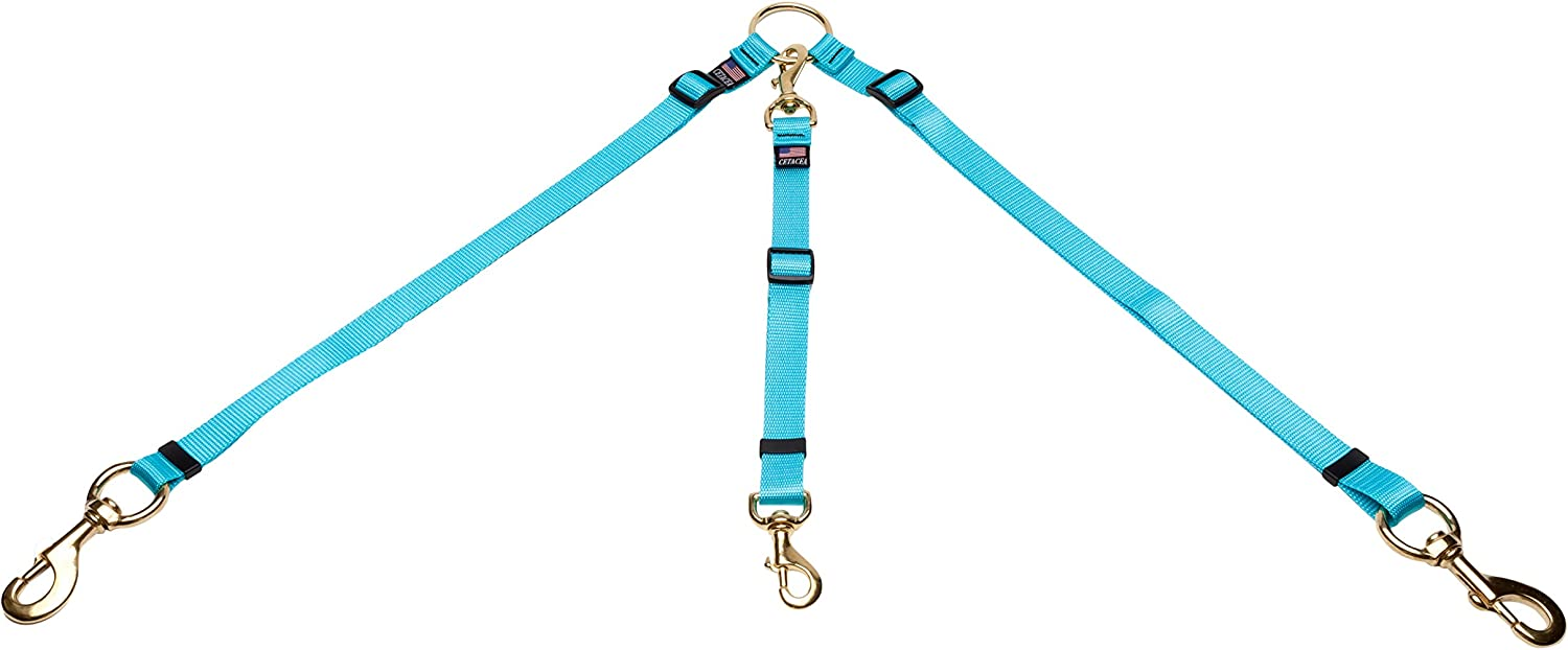 Cetacea Pet Truck Bed Tether, One Size, Turquoise