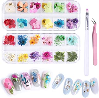 2 Boxes Nail Natural Real Dried Flowers Flower Kit - Five Flowers Starry Flowers Leaf Daisy 3D Nails Decal Preserved Manicure Flowers Stickers (2boxes/108pcs)