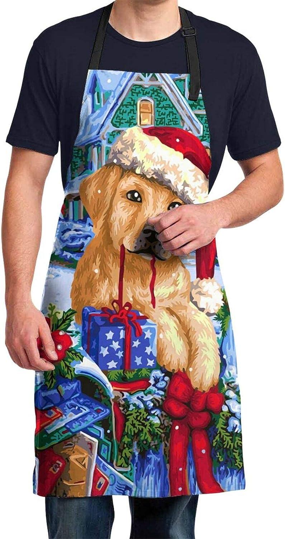 Ahuahua Christmas Xmas Max 79% OFF Golden Retriever Snowflakes Award-winning store Th Winter Dog