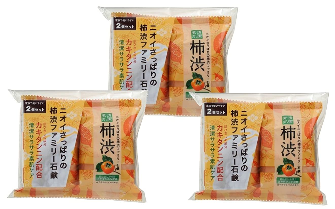 サイトラインスロープアンペアペリカン石鹸 ファミリー 柿渋石けん (80g×2個) ×3個パック