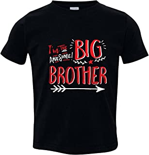 Sibling Shirts for Big Brothers and Little Brother, Big Brother Baseball Shirt