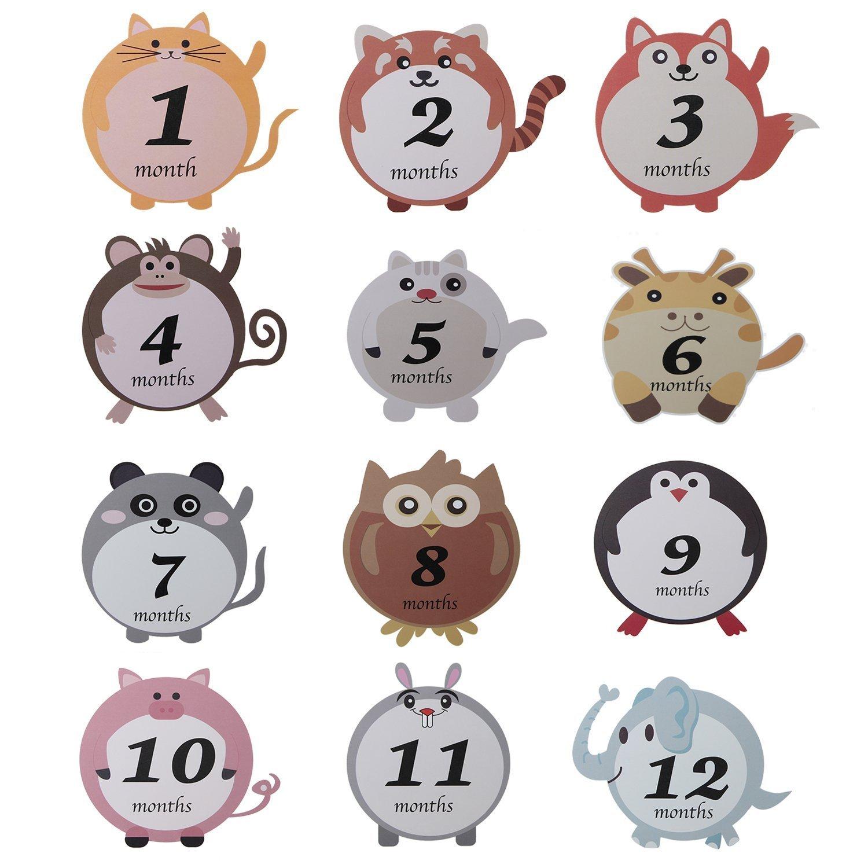 Baby Stickers,Lillypet Baby Boy Month 1-12 Milestone Sticker