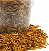 GardenersDream Dried Mealworms Mix - High Quality Wild Bird Food Large Variety (10L Tub)