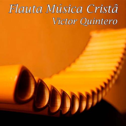 MEU BAIXAR MP3 MUSICA GRATIS BARQUINHO