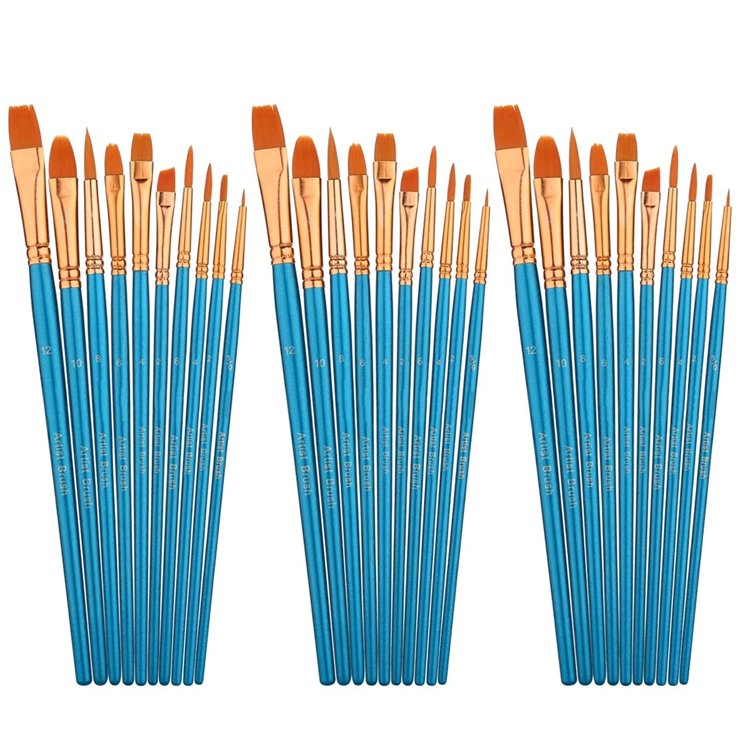 30 pcs Artist Oil Watercolor Paint Brush Set,10 Different Shapes & Sizes Professional Nylon Hair Brushes with Bag for Acrylic Painting