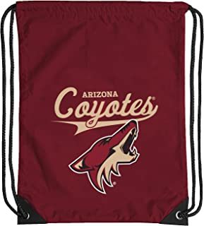 The Northwest Company Officially Licensed NCAA Team Spirit Backsack Multi Color 18