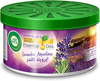 Air Wick Scented Gel Lavender