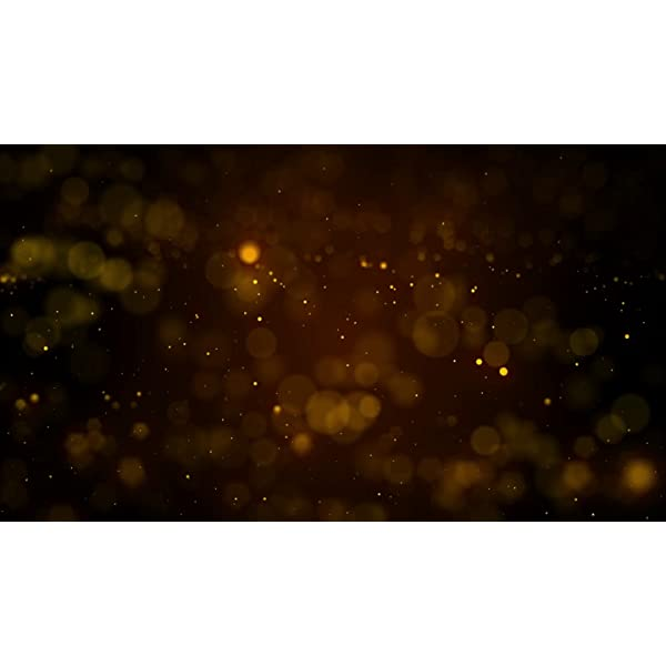 [2 Pacchi] Luci Solari Esterno, Litogo 12m 120 LED Catena Luminosa Esterno Filo Luci Led 8 modalità Lucine da Esterno Decorative Per Giardino, Natale, Patio, Cancello, Cortile, Matrimonio, Festa 7 spesavip