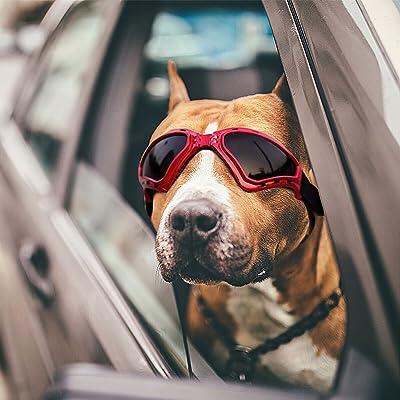 Dog Goggles Sunglasses