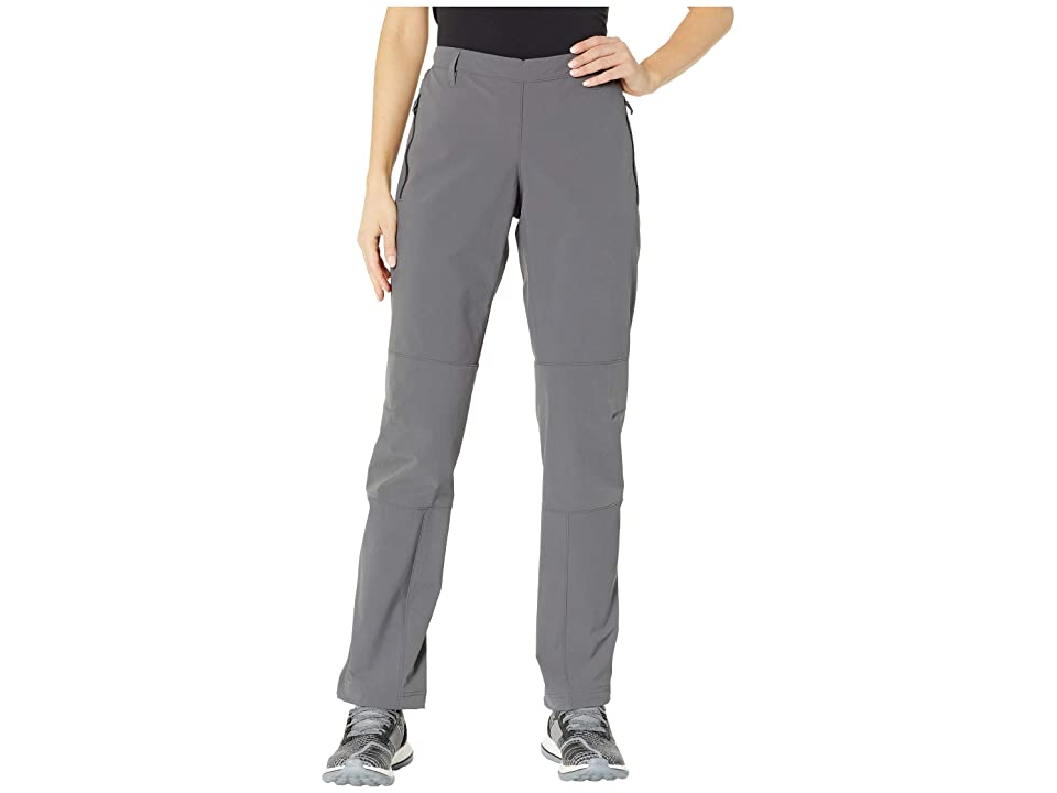 adidas Outdoor Terrex Multi Pants (Grey Five) Women