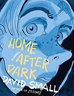 david small home after dark