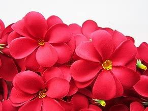 (24) Red Hawaiian Plumeria Frangipani Silk Flower Heads - 3
