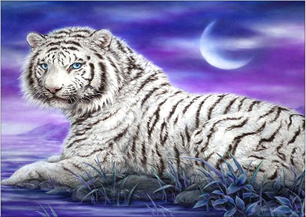 DIY 5D Diamond Painting by Number Kit, White Tiger Crystal Rhinestone Embroidery Cross Stitch Ornaments Arts Craft Canvas Wall Decor 12x16 inches
