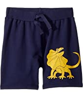 mini rodini - Draco Sweatshorts (Infant/Toddler/Little Kids/Big Kids)