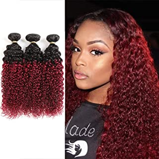Brazilian Kinky Curly Hair Bundles Ombre Curly Hair 3 Pcs 10