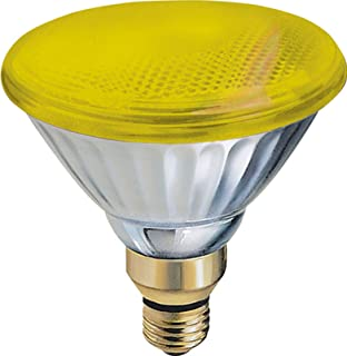 GE Lighting 13473 85-Watt Outdoor PAR38 Incandescent Light Bulb, Yellow