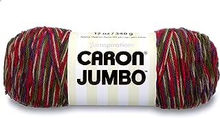 Caron Jumbo Yarn Perennial Variegate
