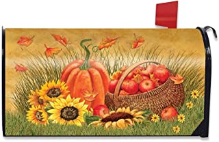 Best magnetic mailbox covers Reviews