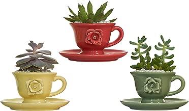 cup saucer planter