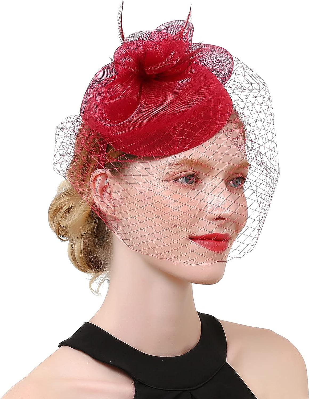 LOVESOO Veil Fascinator for Women Girl Vintage Feathers Kentucky Derby Hat Tea Party Wedding Funeral Hair Clip Headband