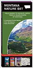 Montana Nature Set: Field Guides to Wildlife, Birds, Trees & Wildflowers of Montana