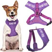 Do Not Feed Purple Color Coded Waterproof Padded Adjustable Alert Warning Small Vest Dog Harness Prevents Accidents By Warning Others of Your Dog in Advance