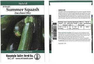 zucchini elite hybrid