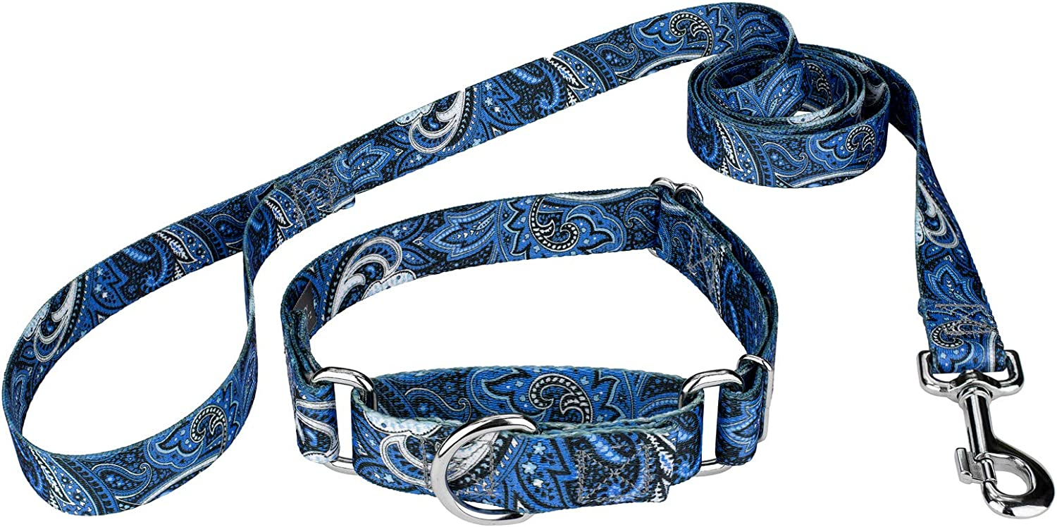 Country Brook Design - Martingale Colle 4 years Ranking TOP1 warranty Paisley Collar Leash